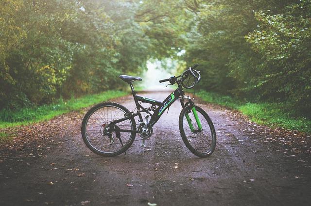 horské kolo.jpg